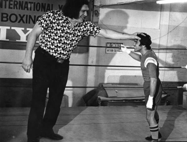 andre-the-giant-next-to-a-boxer1